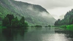 mary w lake
