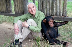 Jane Goodall: A significant shaper of modern-day thought